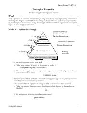 26 Ecological Pyramids-S.pdf - Aaron Shirey Ecological ...
