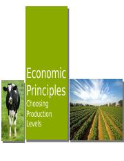 5 - Econ Principles - Choosing Production Levels-1.pptx