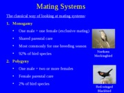 Mating_Systems
