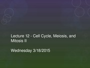 Lecture 12 - Cell Cycle, Meiosis, and Mitosis II