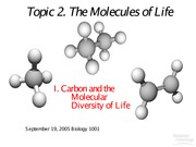 2.0 Molecules and Origin September 19, 2005