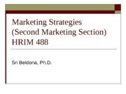 Marketing+Strategies+-+Lodging+Practicum