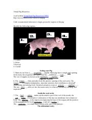 Virtual Pig Dissection.docx