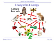 Ecosystem Ecology I-lecture