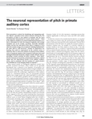 neuronalrepofpitch