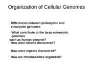Lecture 2 & 3_ Cellular Genomes 1