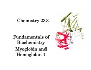 Hemoglobin_and_myoglobin_1