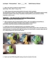 Lab Report Photosynthesis.doc