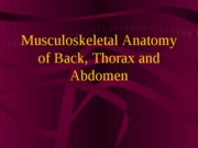 back, thorax, abdomnetppt