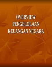 OVERVIEW PKN