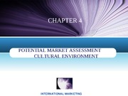 chapter 4 cultural environment