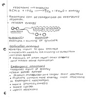 Reactions notes