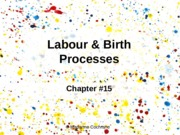 Chapter 15 - Labour & Birth Processes