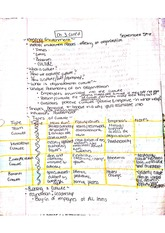Ch. 3 Notes, BUS 250