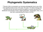 Chapter 2 - Phylogeny and Systematics(JFM)