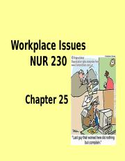 25NUR230 Workplace Issues