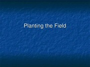 Planting the Field