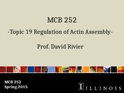 MCB 252 Topic 19 Regulation of Actin Assembly Sp15