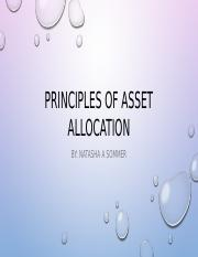 Principles of Asset Allocation power point