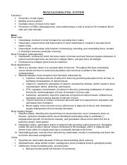 Musculoskeletal and Pain Study Guide.docx