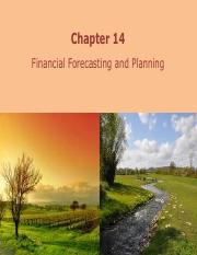 Chapter 14 Financial Forecasting Planning
