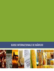 Burse internationale de marfuri  2018-2019_suport ppt.pdf