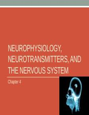 Lecture 4a-Neurotranmission_Neuroanatomy.pptx
