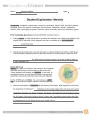 MeiosisSE (1).docx - Name Date Student Exploration Meiosis ...