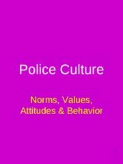 Lecture 7 Police Culture