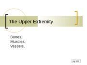 9 - Upper extremity Grays 2010