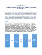 8.5 Diagrams Health Determinants and Environmental Risk