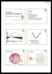 Lect+7.VisualPerception.6slides+per+page