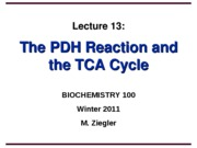 ZieglerLecture13-PDH-TCAcycle