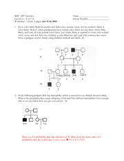 Mendel Worksheet - BISC 2207 Genetics Lecture 3 Worksheet 18 pts 2 ...