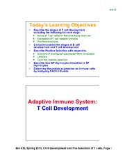 Lecture 17-Chap8_TCell_Development_Apr6_2slides