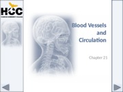 Chapter_21_Blood_Vessels