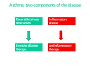 Lecture 4-301 - Asthma