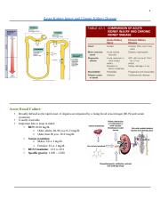 2.2 Study Guide Acute Kidney Injury and Chronic Kidney Disease.docx