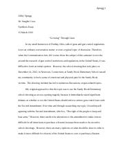 Revised Synthesis Essay.docx