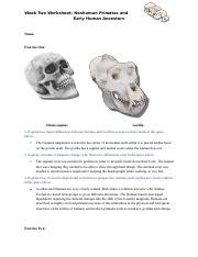 Week2_Skeletal_Comparisons_Part_1_Worksheet.docx - Naimah Spann.docx