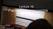 Lecture 16 (Missing Last 20min of Lec) - 20101110