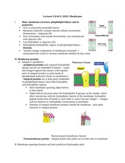 Notes on Membranes