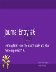Brian Salgado - Journal Entry Themed Instructions (2).pptx