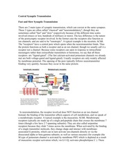 BIO 338 Lecture 14 Central Synaptic Transmission