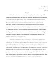 Research Paper Essay Format  Pages Criminal Procedure Informative Synthesis Essay also Best English Essay Topics What Is Professionalism In The Context Of Being A Student In A  Short English Essays
