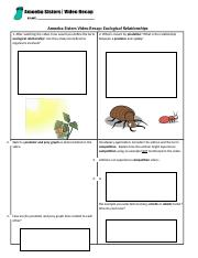 ecological relationships write.docx - Amoeba Sisters Video ...