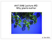 ANT 154BN-02 Why plants matter