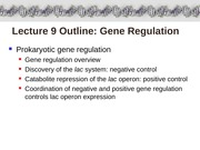 Lecture_9_ARB_guest_lecture_lac-operon