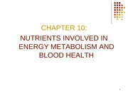 energy metabolism and blood health