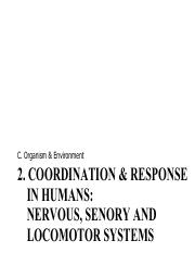 LSCI1001 C2b Human Nervous Sensory and Locomotor Systems
